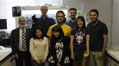 Prof. Mari's research group