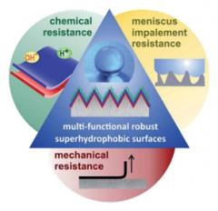 Multifunctional robust superhydrophobic surfaces
