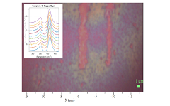 Optical image of MoS2. In the inset Raman spectra