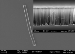 Single Si nanowire (SiNW) produced by metal assisted chemical etching. As etched SiNWs are shown in the inset.